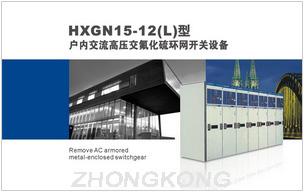 HXGN15-12(L)型